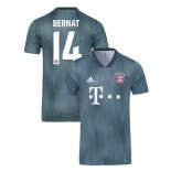 Bayern Munich 2018/19 Third #14 Juan Bernat Gray/Blue Authentic Jersey Jersey