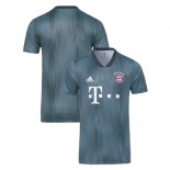 Bayern Munich 2018/19 Third Gray/Blue Replica Jersey
